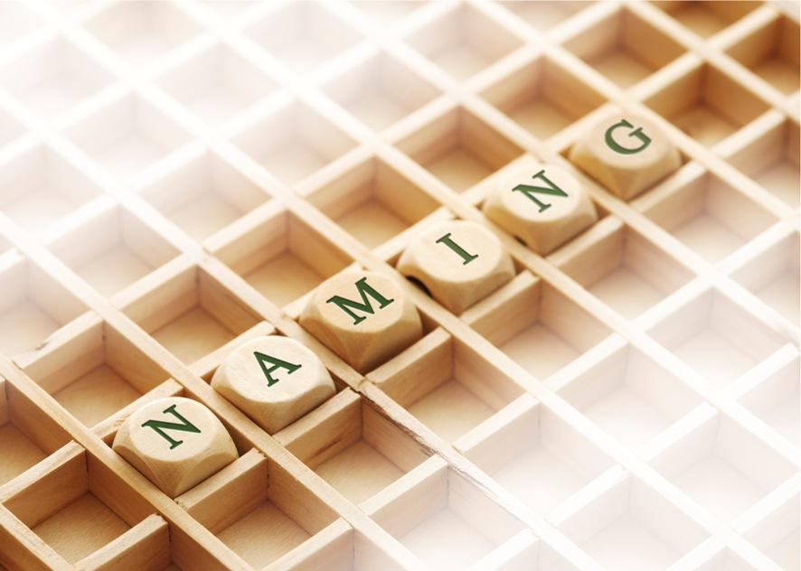 Naming-1-V13I27